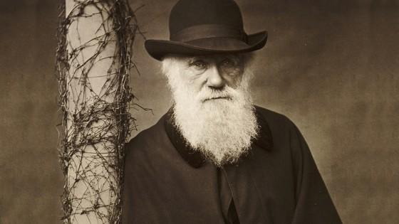 evolution - lovisolo - Epicure - Charles Darwin