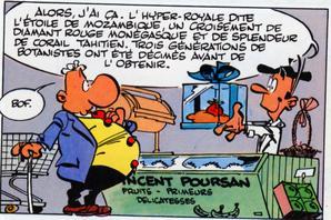 Vincent-POURSAN-copie-1