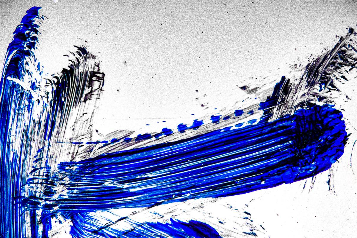 n003 bleues ephemeres frank lovisolo guillard