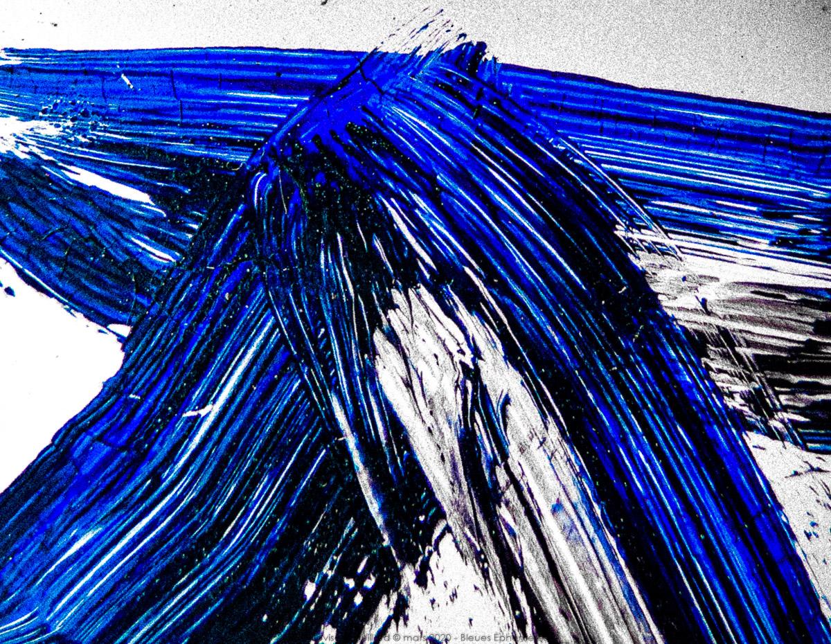 n009 bleues ephemeres frank lovisolo guillard
