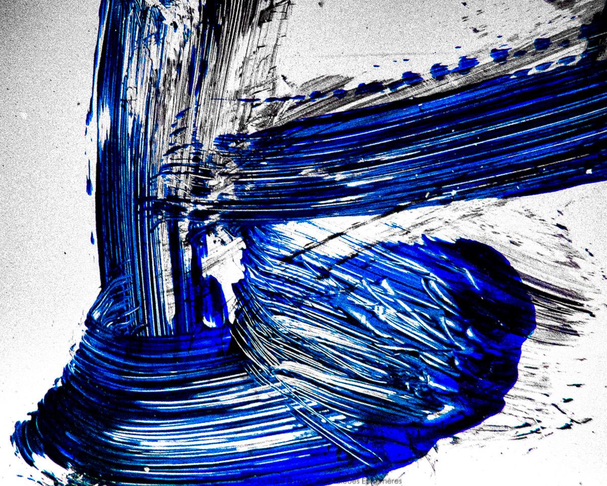 n010 bleues ephemeres frank lovisolo guillard