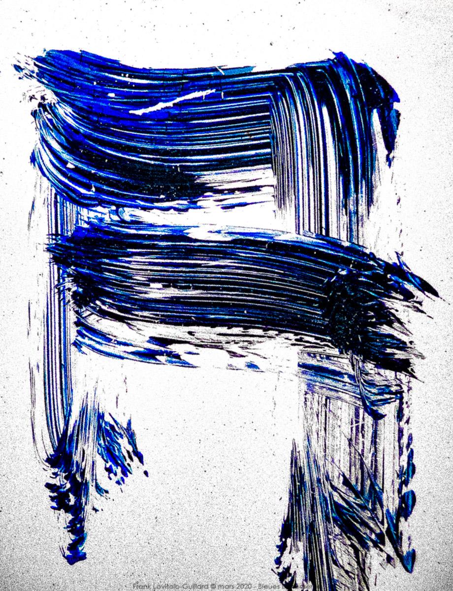 n012 bleues ephemeres frank lovisolo guillard