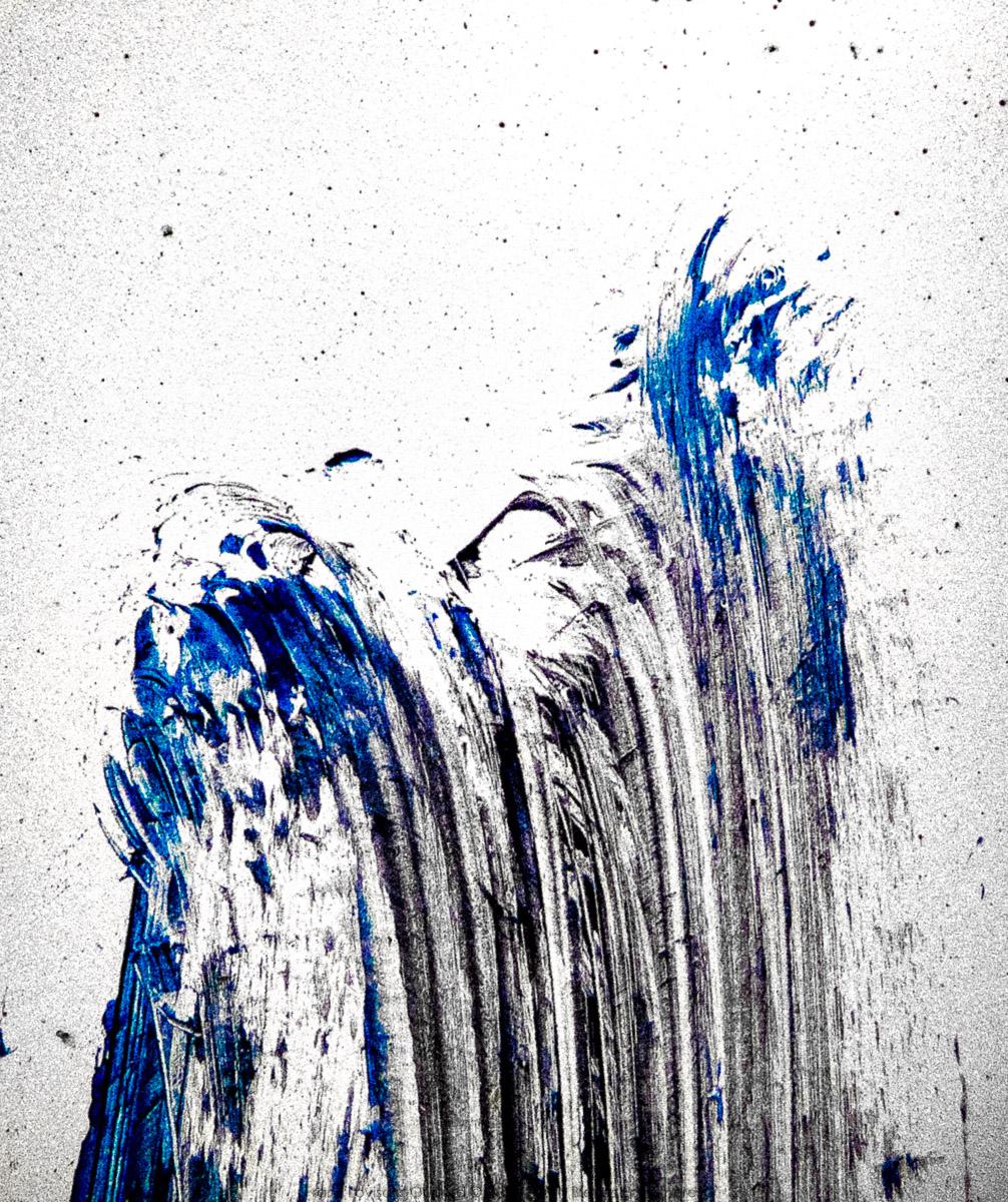 n016 bleues ephemeres frank lovisolo guillard