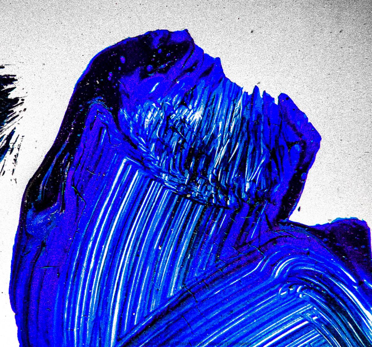 n017 bleues ephemeres frank lovisolo guillard