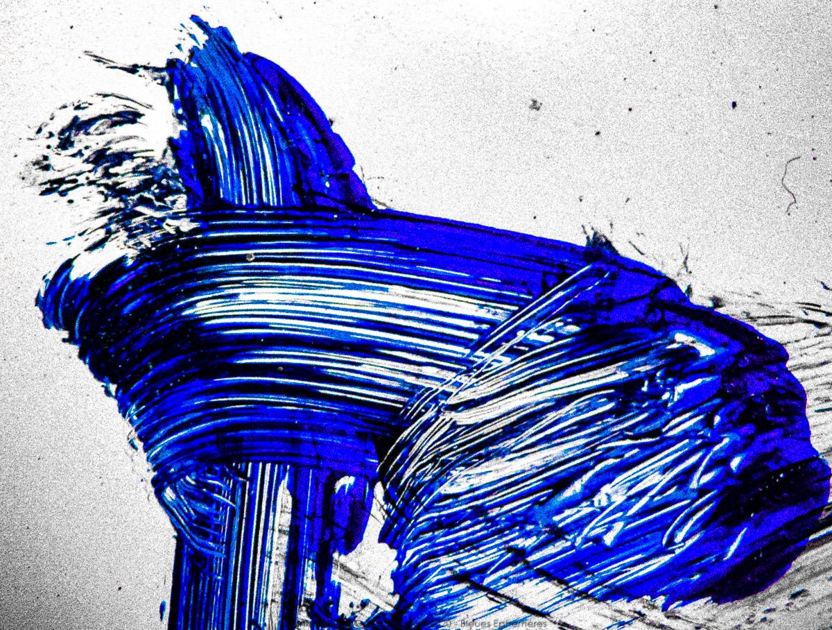 n019 bleues ephemeres frank lovisolo guillard
