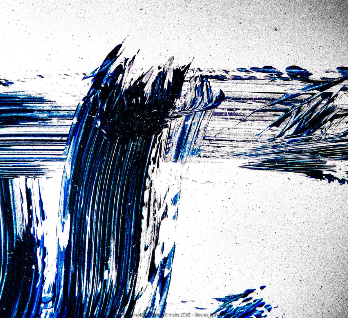 n020 bleues ephemeres frank lovisolo guillard