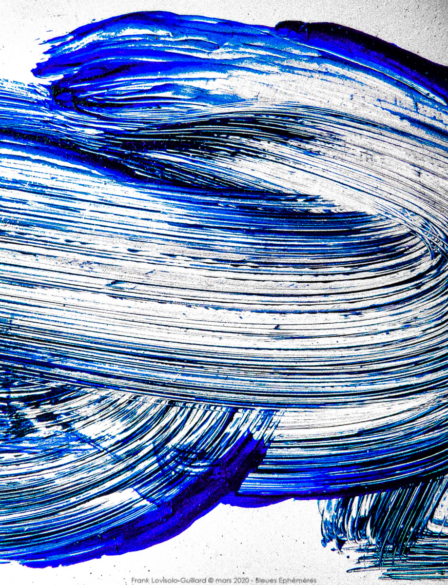n022 bleues ephemeres frank lovisolo guillard