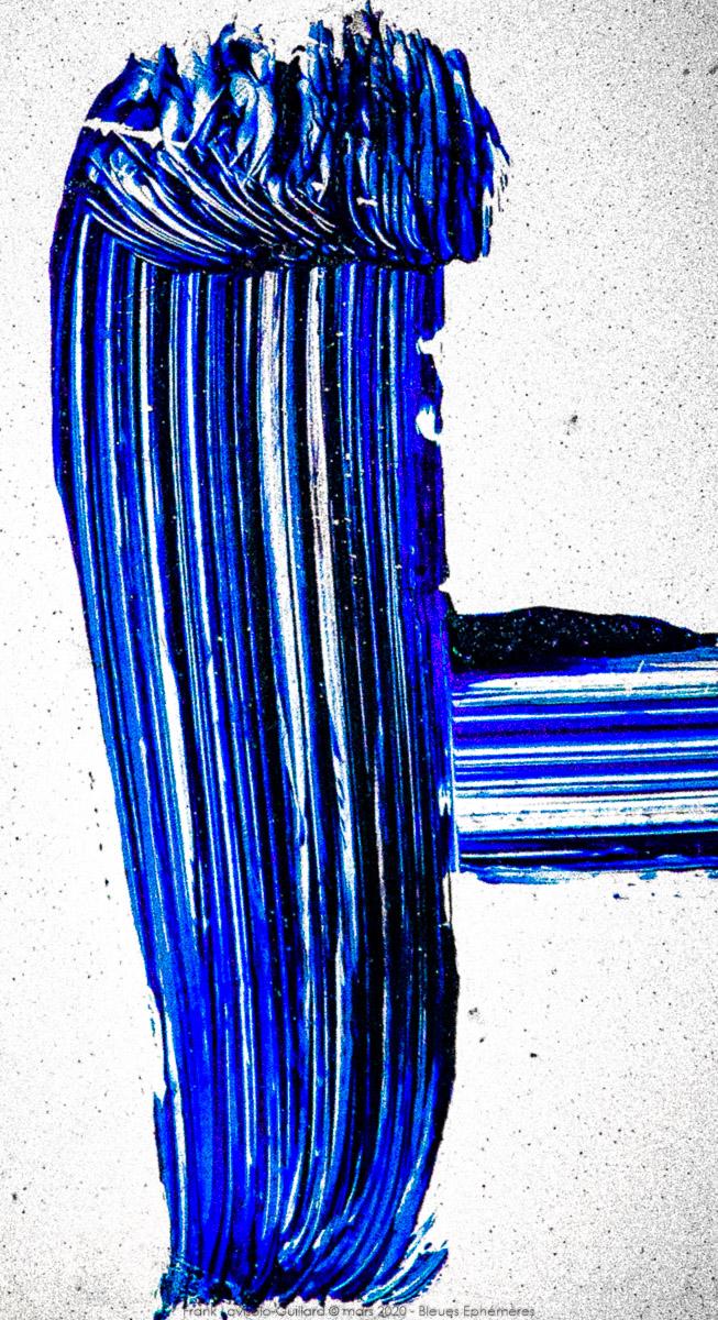 n024 bleues ephemeres frank lovisolo guillard