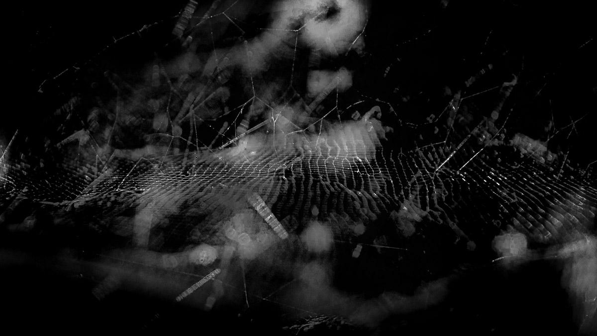 n011 confit noir frank lovisolo guillard