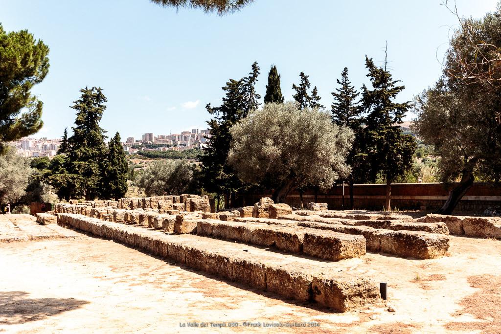 la valle dei templi 050
