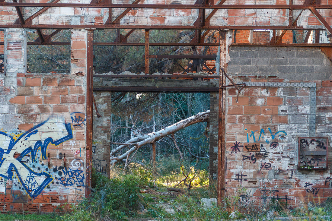 batiments abandonnes de la baie de balaguier 37