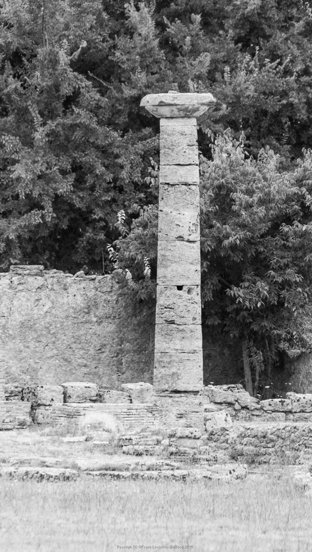 paestum 50