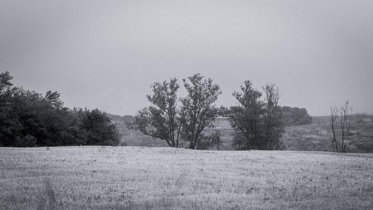 paysages en roulants juillet 2019 n002