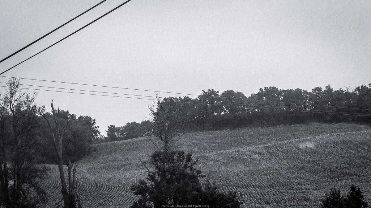 paysages en roulants juillet 2019 n004