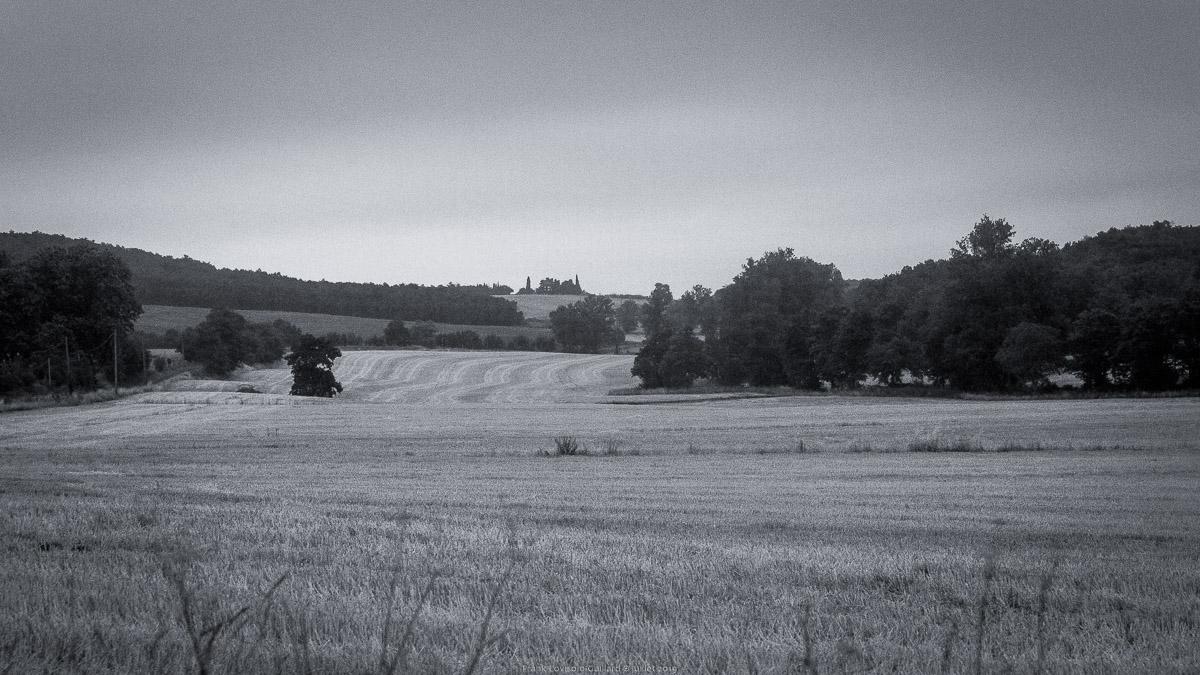 paysages en roulants juillet 2019 n008