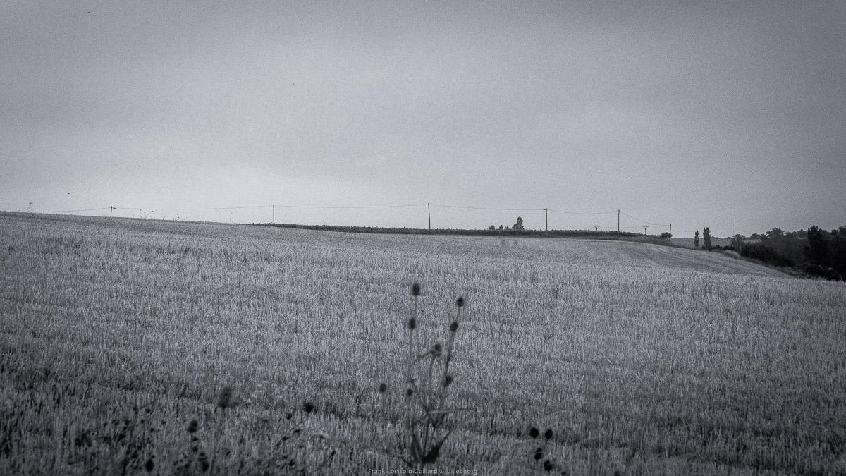 paysages en roulants juillet 2019 n010