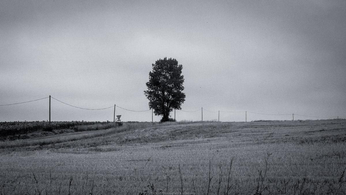 paysages en roulants juillet 2019 n011