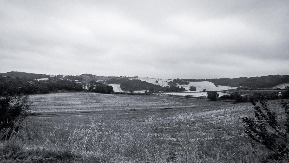 paysages en roulants juillet 2019 n013