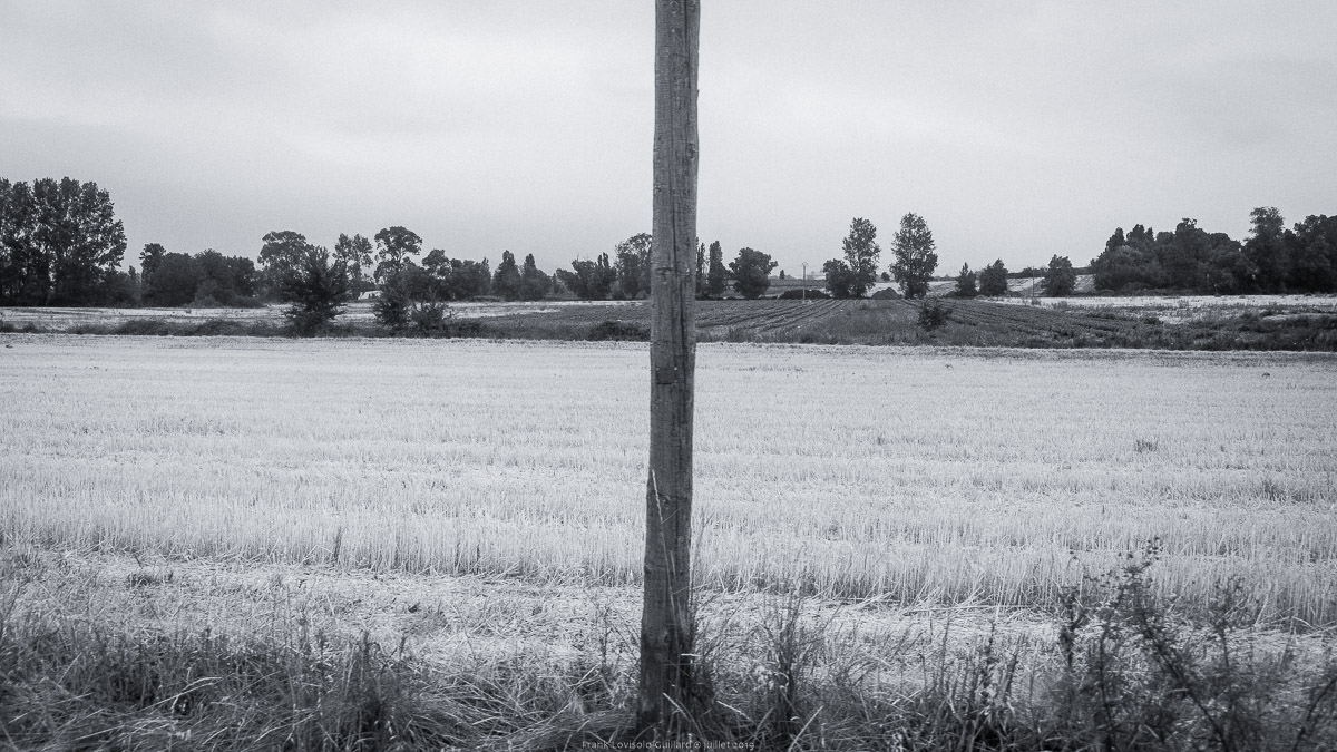 paysages en roulants juillet 2019 n017