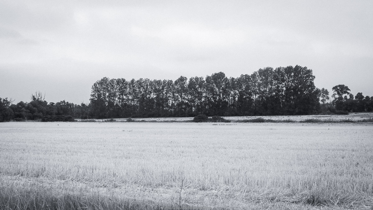 paysages en roulants juillet 2019 n018
