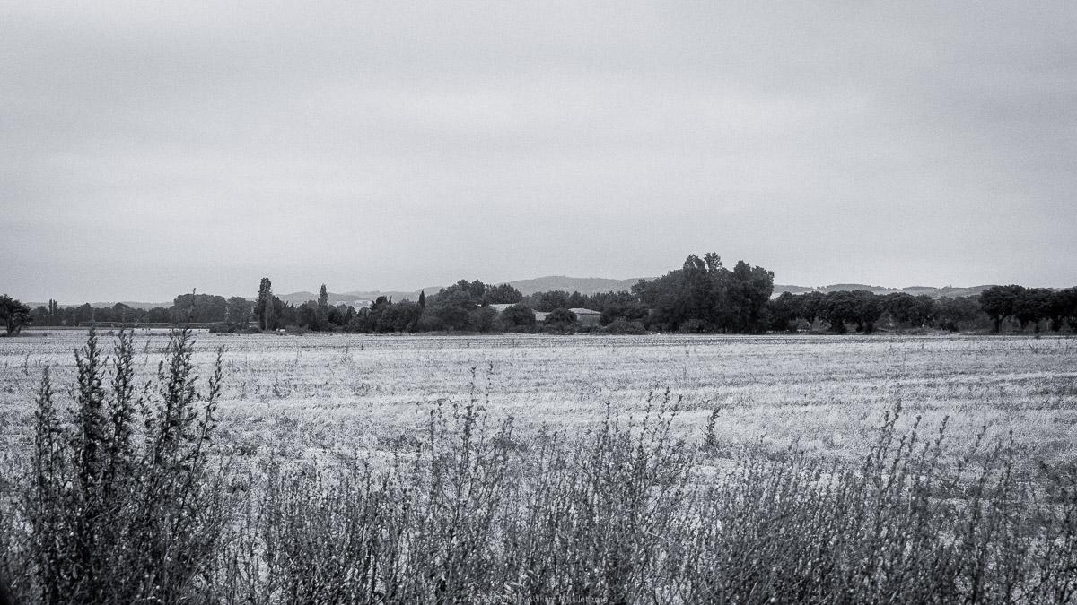 paysages en roulants juillet 2019 n022