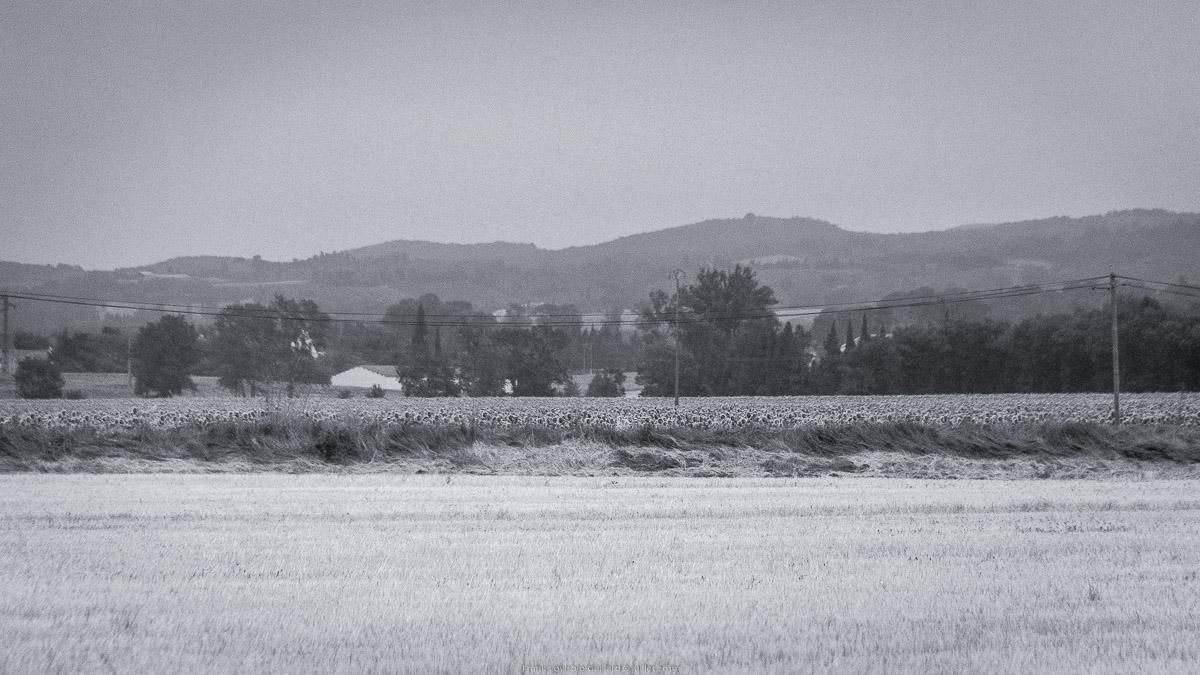 paysages en roulants juillet 2019 n024