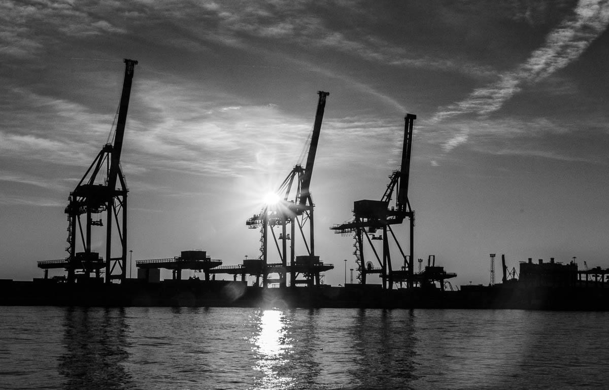 port sans genes en 2016 022