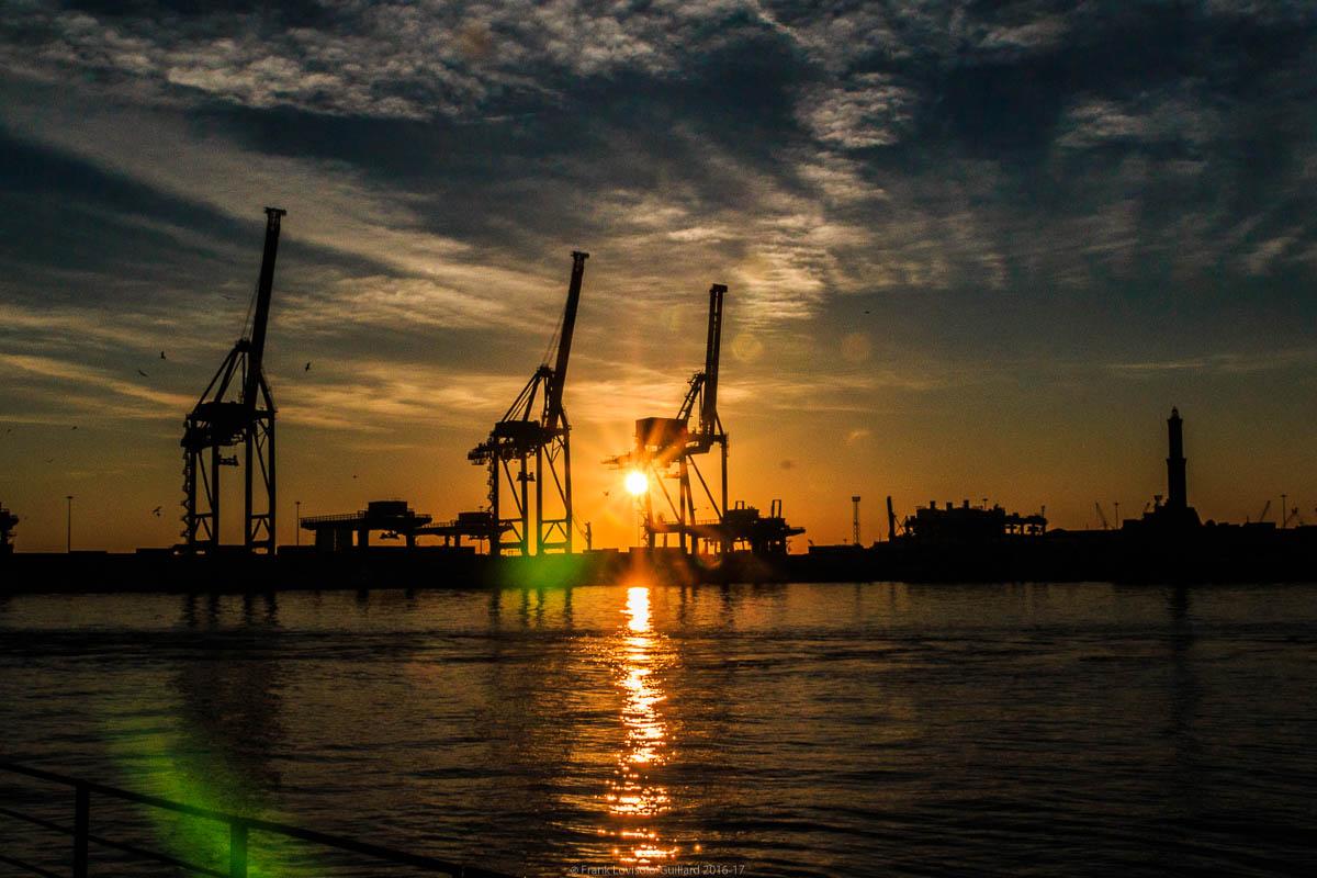 port sans genes en 2016 032