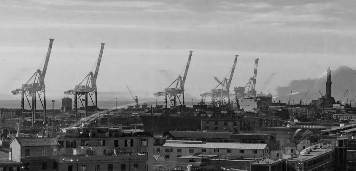 port sans genes en 2016 053