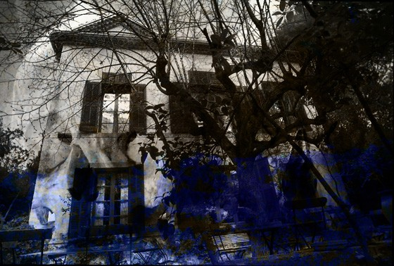 Cezanne garden secrets
