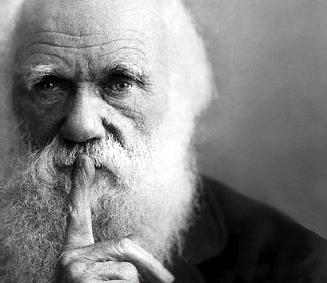 Lovisolo - Darwin - évolution