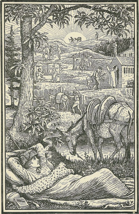 Voyage avec un âne dans les Cévennes - Lozère