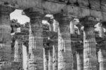 Paestum: Le plongeur et la lumière.