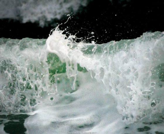 Ô sculptons l'eau