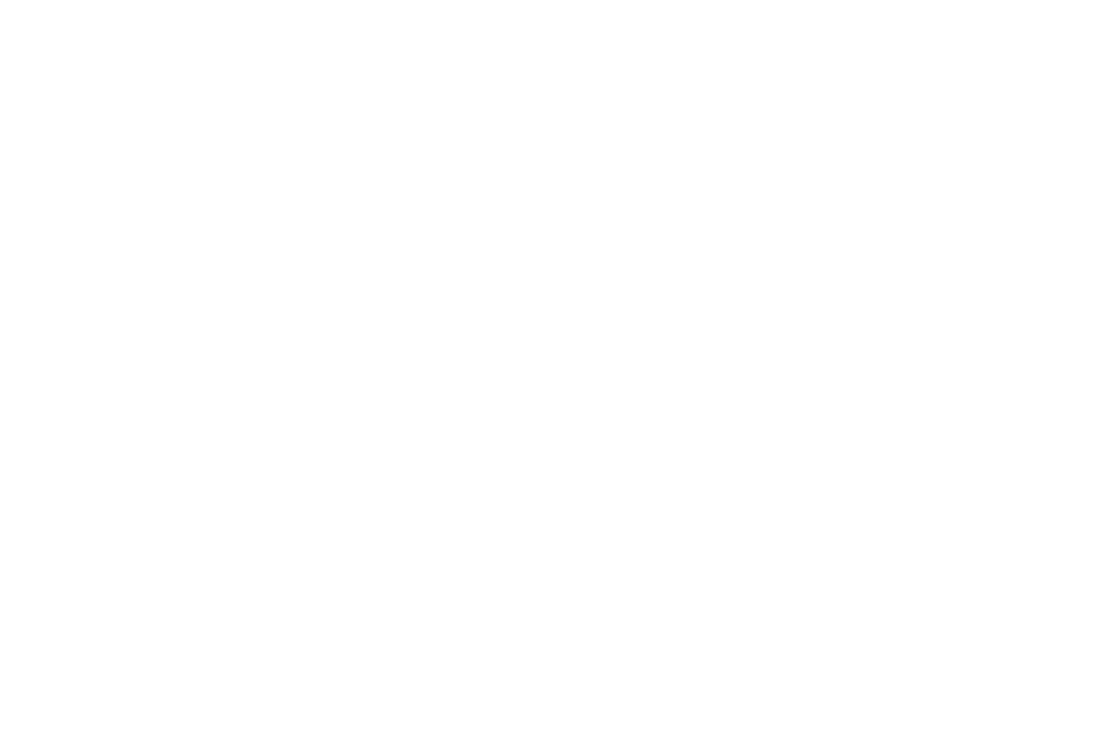 OFFICIAL SELECTION - BIDEODROMO International Experimental Film and Video Festival - 2019 (1)