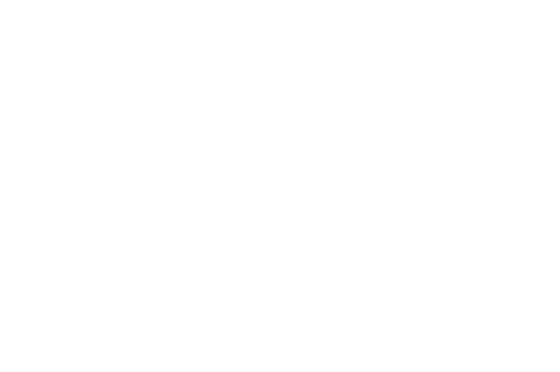 OFFICIAL SELECTION Music Shorts Film Festival 2019 1
