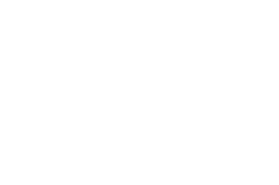 OFFICIAL SELECTION Starlight Film Awards 2019 1