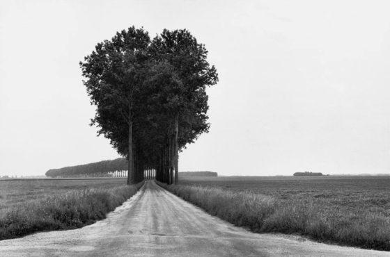 Henri Cartier Bresson 1908 2004 En Brie 1968
