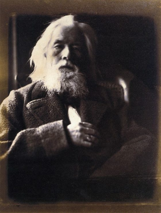 Charles Hay Cameron, by Julia Margaret Cameron 1864