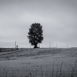 Paysages en roulant – Juillet 2019 photographies Noir et Blanc
