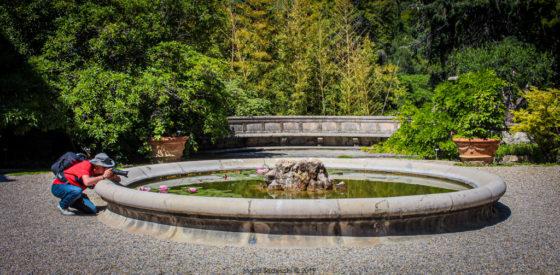 Jardin botanique Hanbury - Lovisolo Tedeschi
