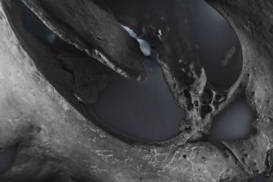 Voyage en crane inconnu - ossifère